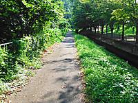 2012_09050025s